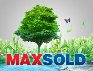 maxsold-01